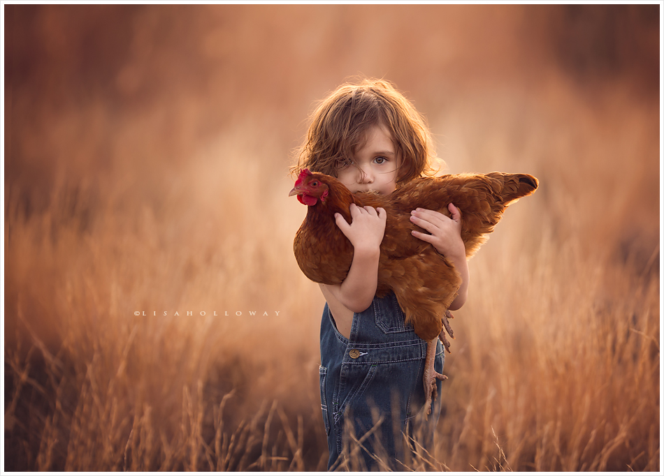 Cute little boy with curly hair holds his pet chicken in an outdoor portrait near las ljholloway photography is a las vegas