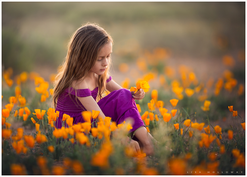 Cute little girl picks poppies outside in a field for her child portrait shoot near las