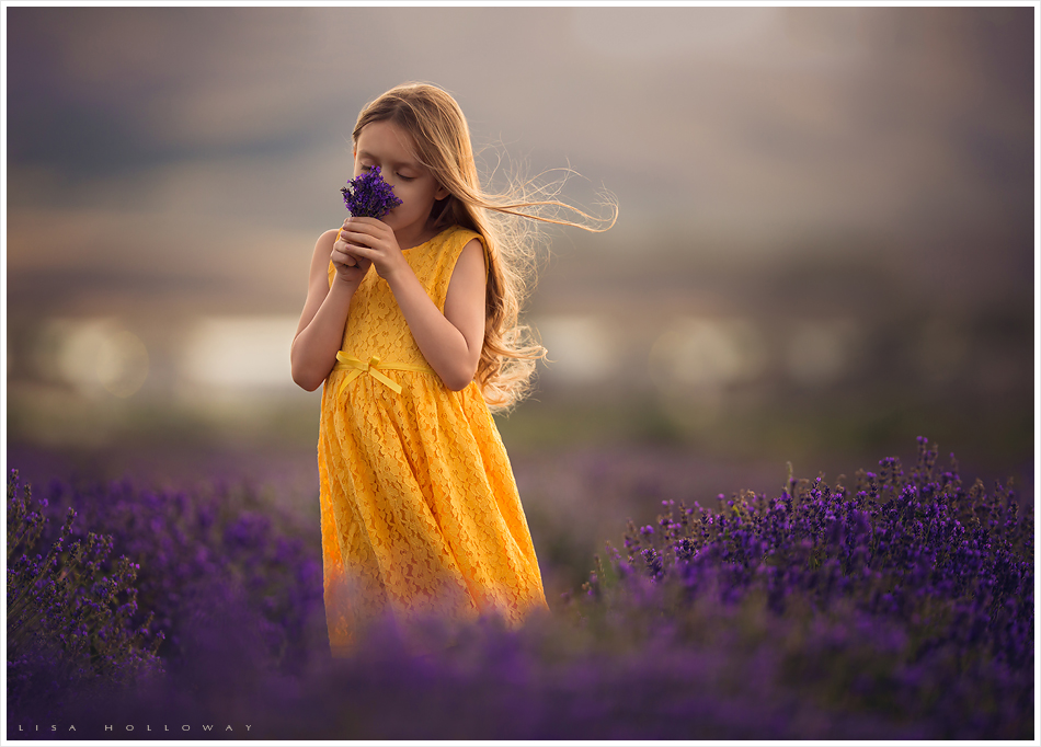 cute little girl with long hair and a yellow dress smells the lavender flowers she picked in a lavender field