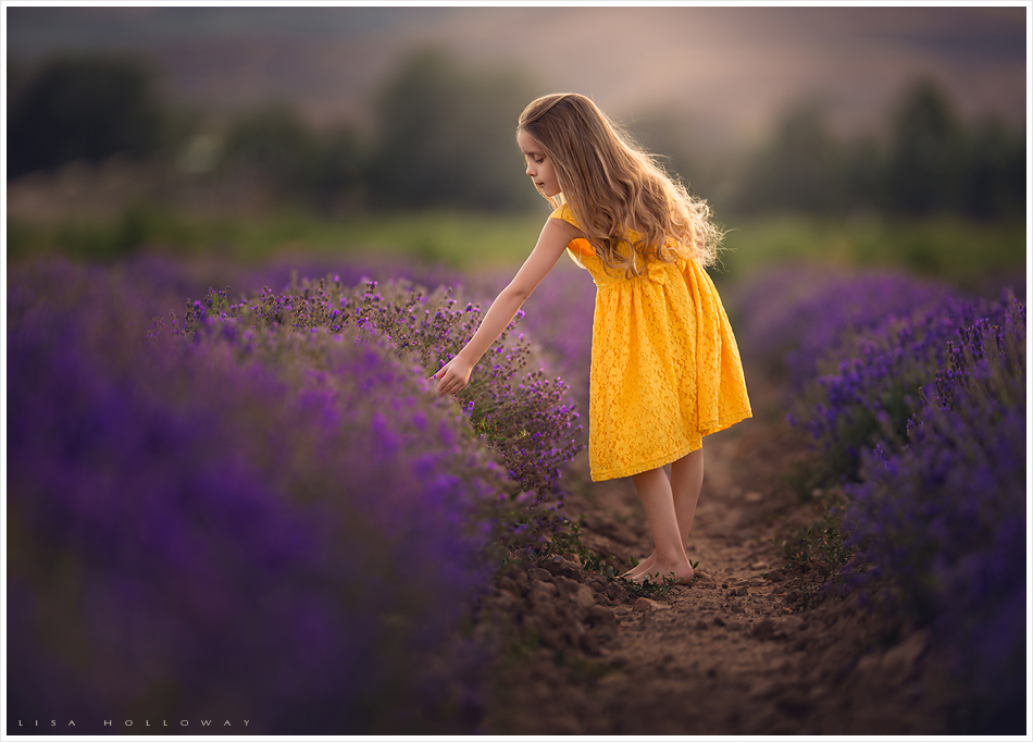 cute little girl with long hair and a yellow dress picks lavender in a field outdoors for a photo session