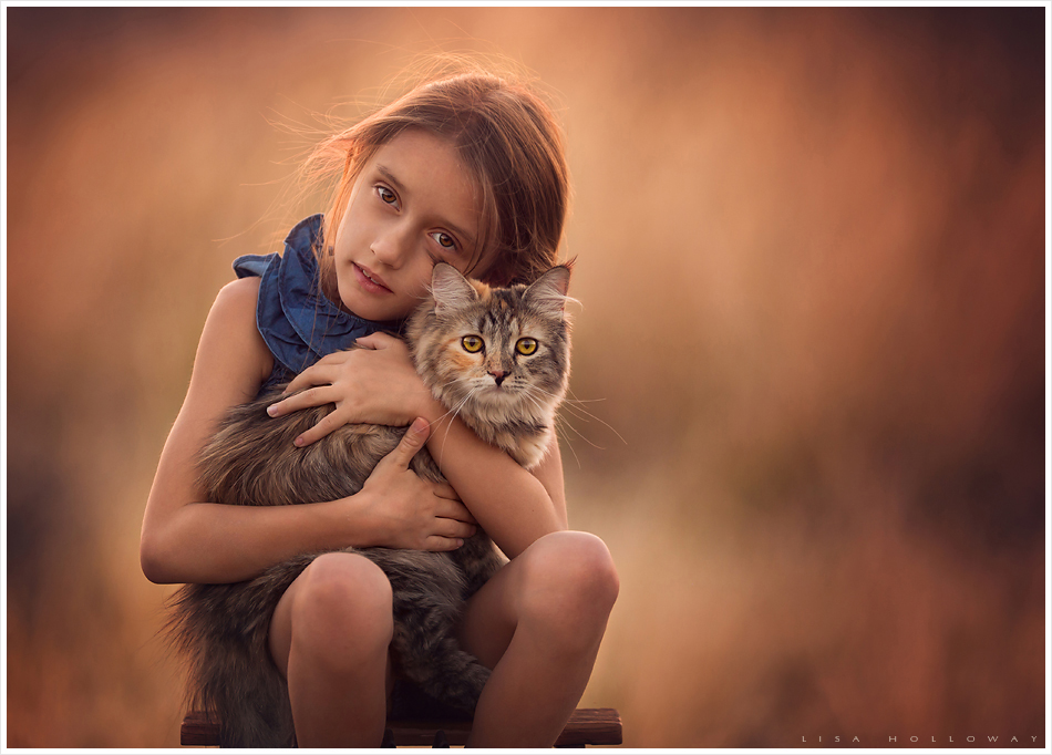A little girl holds her calico Siberian cat for a portrait outside in a back lit field near Las Vegas.