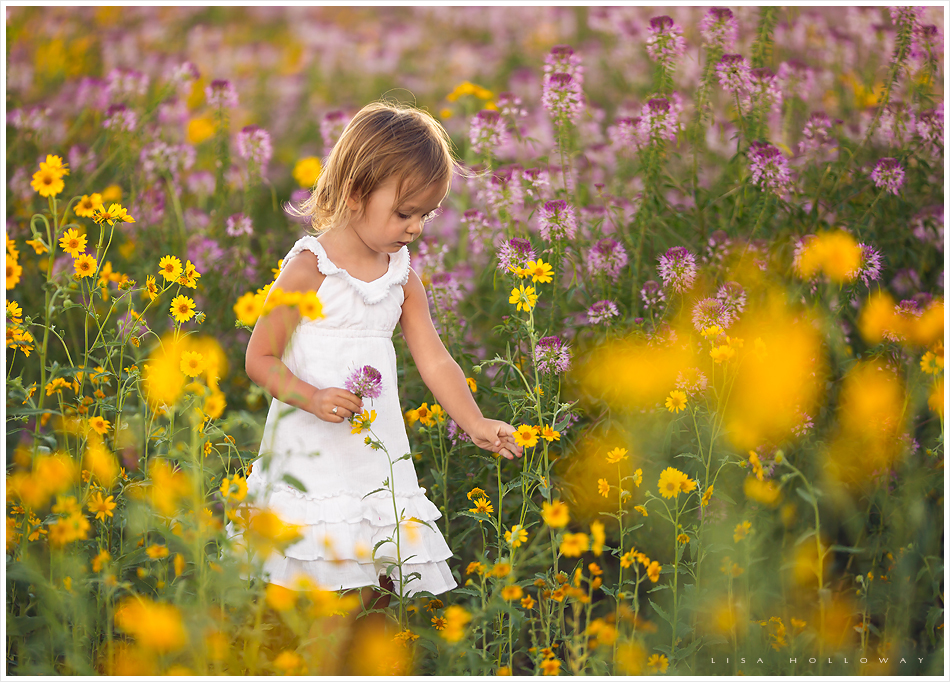 cute little girl picks yellow and purple flowers outside in a field during her child portrait session near las vegas