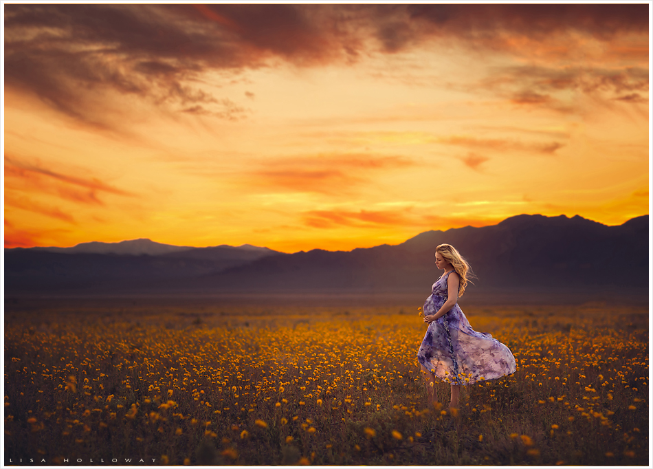 Beautiful pregnant woman in a flowing purple dress poses in a field of yellow wildflowers at sunset for her maternity pictures near Las Vegas. LJHolloway Photography is a Las Vegas Maternity Photographer.