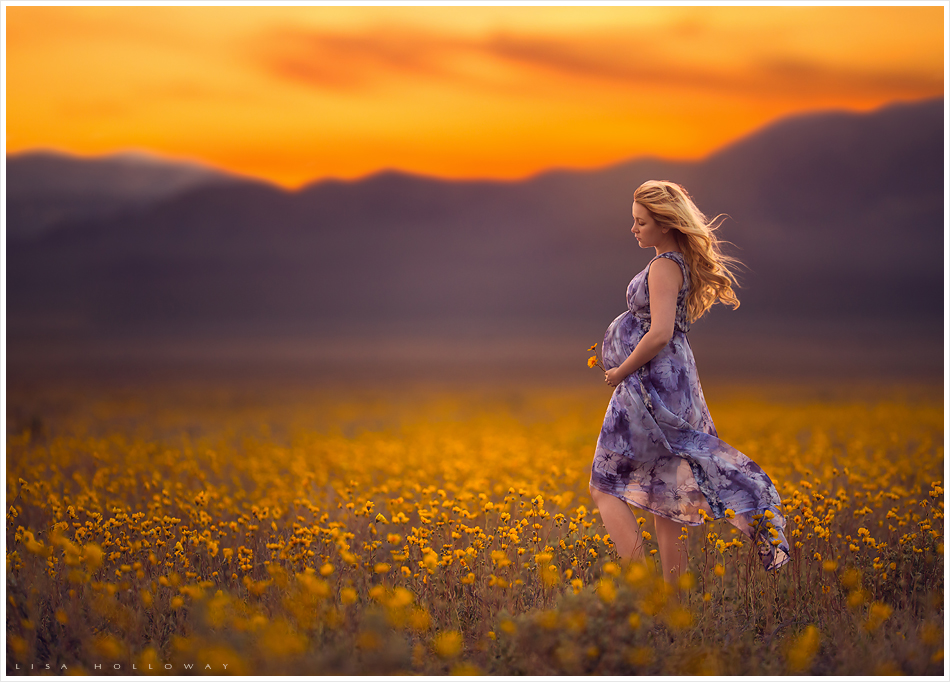 Beautiful pregnant woman in a flowing purple dress poses in a field of yellow wildflowers at sunset for her maternity session near Las Vegas. LJHolloway Photography is a Las Vegas Maternity Photographer.