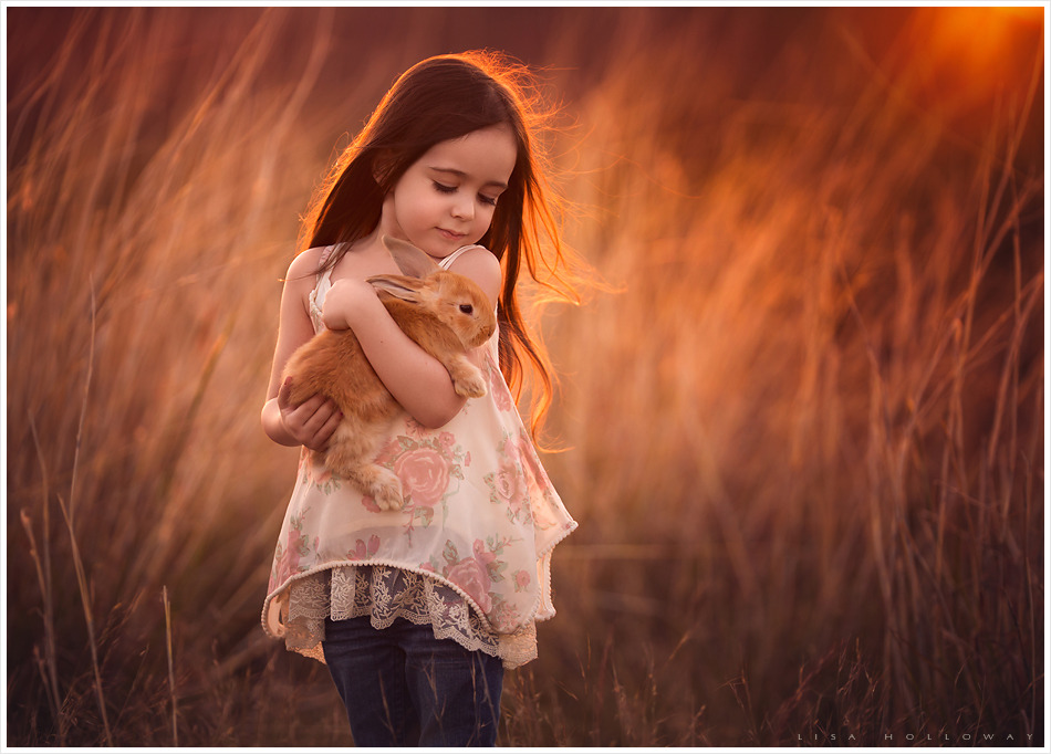 A cute little girl holds a pet bunny in golden grasses outdoors for a portrait. LJHolloway Photography is a Las Vegas Child Photographer.