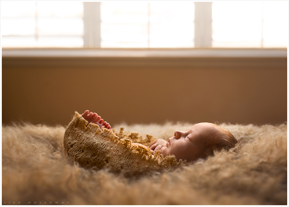 Side profile portrait of a newborn baby girl wrapped in a tan colored knit material sleeping in front of the window. LJHolloway Photography is a Las Vegas Newborn Photographer.