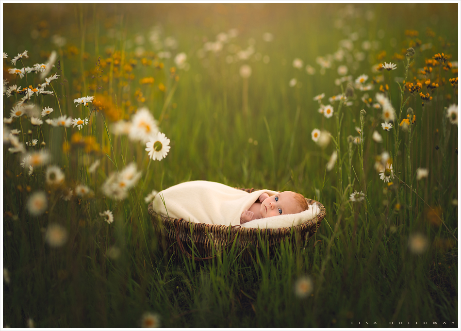 Portrait of a newborn baby girl with red hair outdoors in the wildflowers. LJHolloway Photography is a Las Vegas Newborn Photographer.